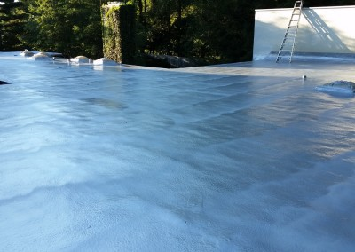 SPF Roof on Large House