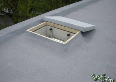 Coatings for Roofing